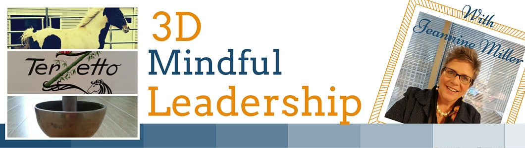 3D Mindful Leadership